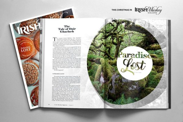 Issue4-Sample2